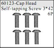 60123 - Cap Head Self-tapping Screw 3*42 6P