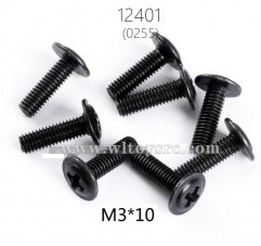 12401-0256 Tornillos M3*10 8uds