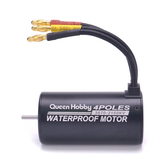 Motor brushless coches 1/8 Queen Hobby 3670 2650KV Waterproof Buggy Monster 1:8 4S