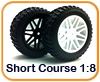 Ruedas Rally Short Course 1/10